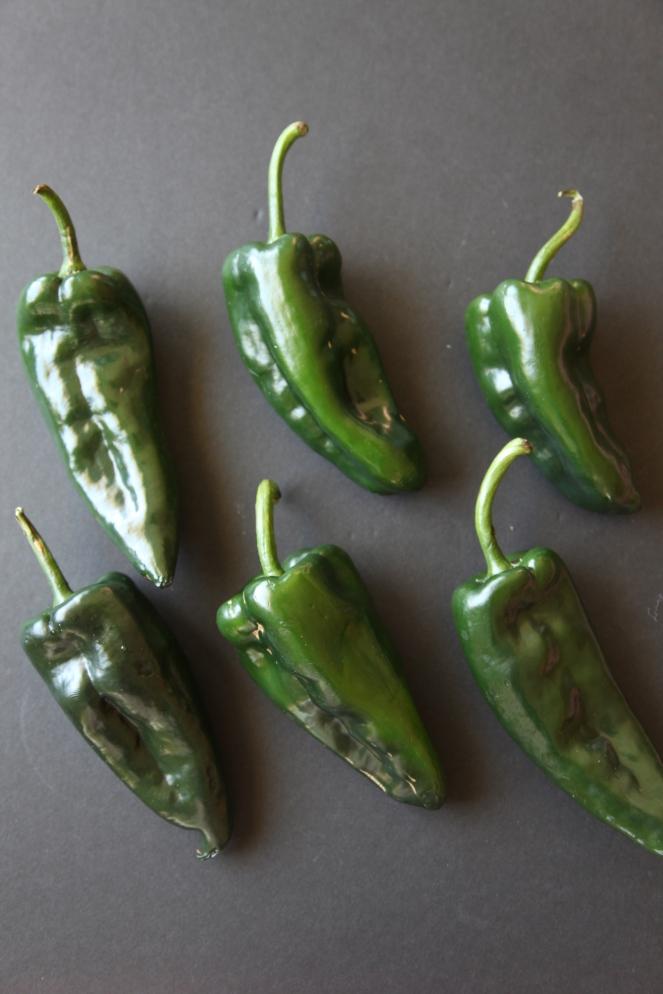 Turkey Stuffed Poblano Peppers - Modern Little Victories